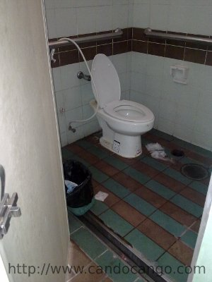 A disabled toilet - but the doorway is too narrow and there's a gutter across it